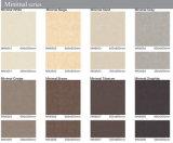 Azulejos de suelo esmaltados serie del material de construcción 600X600mm/300X600mm-Minimal