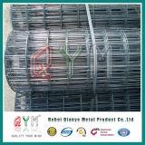 Zink beschichtete geschweißtes Ineinander greifen-Rolle/galvanisierter Maschendraht-China-Lieferant