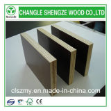 Shengze Venta caliente Film enfrenta la madera contrachapada