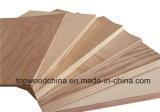 家具の/Decorationの使用のためのカシかSapeleまたは灰またはチークのベニヤの空想の合板