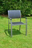 Legno della plastica di 100% per la mobilia esterna della sosta della mobilia con la Tabella