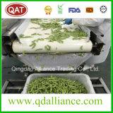 Les noyaux de soja IQF de qualité supérieure