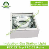 Indicatore luminoso di induzione della stazione di servizio di alta qualità 80W~250W