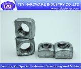 Noix carrée galvanisée blanche de l'acier du carbone DIN557