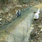 高品質の中国Gabionの網