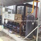 Abkühlung-Kompressor-einfrierendes kondensierendes Gerät für schnelle Gefriermaschine