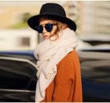 Женская кашемира шарф (13brdw101)