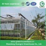 Invernadero agrícola de la hoja de la PC del policarbonato de la casa verde de la PC