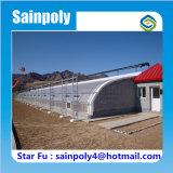 الصين تصميم حديث نوع زراعيّ دفيئة شمسيّ