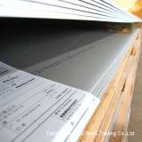Fabricante profesional de la placa de acero inoxidable (ASTM317L)