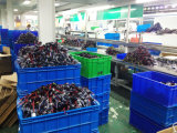 AC 12V 55W 9005 Plastic Base Automotive HID Bulbs