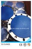 ANSIはステンレス鋼1.4541のCl300 321フランジを造った