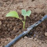 Les terres agricoles flexible au goutte à goutte pour système d'irrigation au goutte à goutte
