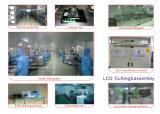 Étalage de TFT LCD de 7 pouces avec 800 (RVB) X480 bornes de la résolution 50