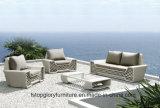 tempo de entrega mais rápida de Design Personalizado Outdoor sofá de vime, Barato Jardim de vime sofá (TG-1393)