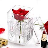 Kundenspezifischer Rosen-verpackenplexiglas-Blumen-Kasten des freien Acryl-1