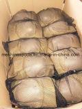 CP Camo 옥외 운동 충격 저항하는 전술상 무릎 패드