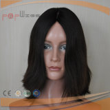 Brazilian Hair Full Laces Silk Front Wig (PPG-l-0297)