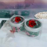 Fabrik gelieferte neue konzipierte Zinn-Glas-Kerze