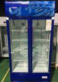 vetrina dritta del frigorifero della frutta 520L con Ce