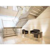 Moden Metallholz-Treppen-Innentreppenhaus-Entwurf