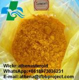 Polvere farmaceutica Isotretinoin delle materie prime di 99% per acne severa CAS: 4759-48-2