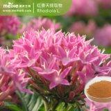 100%自然なRhodiola Roseaのエキス