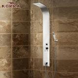 El panel del acero inoxidable en la columna encubierta final de la ducha del espejo (K2606)