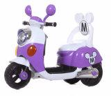 2017 Beste die de Nieuwe Rit van het Type op de Motor van de Jonge geitjes van het Stuk speelgoed verkopen