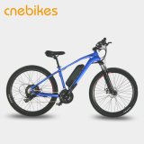 Bicicleta eléctrica de la montaña con la fork de la suspensión y la batería del Litio-Ion 36V