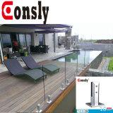 Edelstahl-Gussteil-Spiegel-Sicherheitszaun-Pfosten-Balustrade-Pool-Zaun-Glasswimmingpool-Zaun-Zapfen
