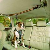 Trela ajustável do Seatbelt do cão de Zipline do veículo do carro do animal de estimação