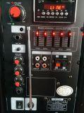 Altofalante do trole do preço do altofalante grande Fábrica-Bom com o Bluetooth para a bateria de lítio do partido/karaoke