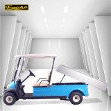 貨物キャリアが付いている電気事業のゴルフカート