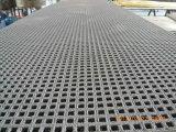 Reja moldeada FRP/GRP/calzada de alta resistencia que ralla /Platform