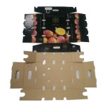 China hizo la caja de embalaje del papel barato de la tuerca con la pieza inserta de papel interna