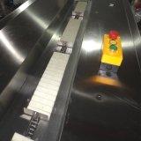 Machine à emballer automatique de flux de panneau avec le contrôle d'AP