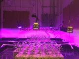 L'alta qualità economizzatrice d'energia LED si sviluppa chiara per la coltura idroponica