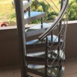 Escadaria espiral de vidro interior do aço inoxidável de projeto 2017 moderno para o Sell