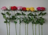 Qualité des fleurs artificielles des fleurs sauvages Bush Gu-Jy912203700