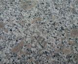 安い中国の花こう岩の平板のタイル