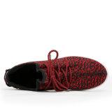 La aptitud de las señoras Flyknit calza los zapatos corrientes de la aptitud ocasional