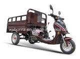 무능한 사람들을%s 세발자전거가 제조자 중국 스쿠터 화물 세발자전거에 의하여, 110cc 핸디캡을 붙였다