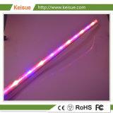 Crescente tubo del LED per le piante che crescono nella fabbrica delle piante