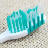 Cepillo de dientes caliente de la fábrica de Yangzhou del masaje de la lengüeta del masaje de la goma de la venta