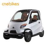 新しく安くスマートな電気小さい車中国製
