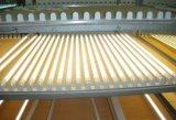 luces plásticas T8 del tubo de 9W 600m m LED con la MAZORCA