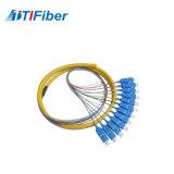 12core Sc/APC 1310/1550 Pigtail da fibra de Singelmode para ODF