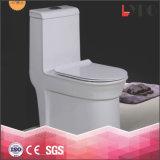 Ciotola di toletta di ceramica a doppio scopo della vaschetta del Wc del gabinetto