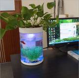 Bureau, Hotel, Tank van de Vissen van het Aquarium van de Staaf de Tegen Acryl